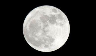 Am 30.08.2015 erhellt ein Supermond den Himmel. (Foto)