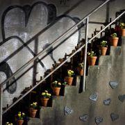 Gericht sieht bei Loveparade-Klage keine Aussicht auf Erfolg (Foto)
