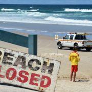 Angriff vor Sydney: Hai zerfleischt Mann das Bein (Foto)