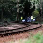 Angebliche Finder des «Nazi-Zugs» gehen an die Öffentlichkeit (Foto)
