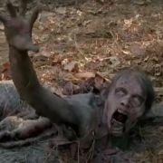 Zombies wie diese gilt es auch wieder in Staffel Fünf zu bekämpfen.