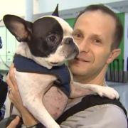 Pilot ändert Route und rettet so das Leben eines Hundes (Foto)