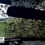 Umgekippter LKW: Bienen-Schwarm hält Polizisten fest (Foto)