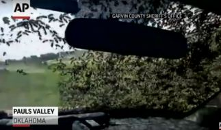 Was für Aufnahmen! Abertausende Bienen besetzen einen Polizeiwagen. (Foto)