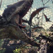 Deshalb starben die Dinos wirklich aus (Foto)