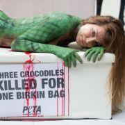 Bissiger Nackt-Einsatz als Alligator (Foto)