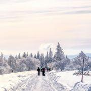 Das sagen die Experten - So kalt werden die Winter-Monate (Foto)