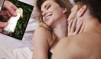 Ein Wunderpilz soll nun als neue Waffe gegen Frust im Bett helfen. (Foto)
