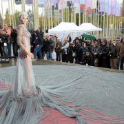 Nacktschnecke präsentiert merkwürdigen Look (Foto)