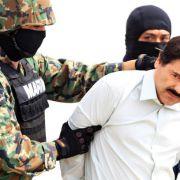 """Affe """"Botsas"""" bringt Ermittler auf Spur von """"El Chapo"""" (Foto)"""