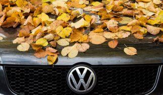 Der VW-Konzern fährt für das dritte Quartal 2015 schwere Verluste ein. (Foto)