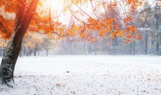 Der Hundertjährige Kalender sagt eher durchwachsenes November-Wetter voraus. (Foto)