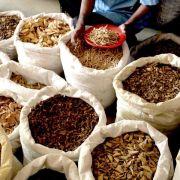 Gefährliche Ayurveda-Pillen aus Sri Lanka - Justiz ermittelt (Foto)