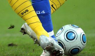 Am 12. Spieltag der Fußball-Bundesliga treffen im Revierderby Dortmund und Schalke aufeinander. (Foto)