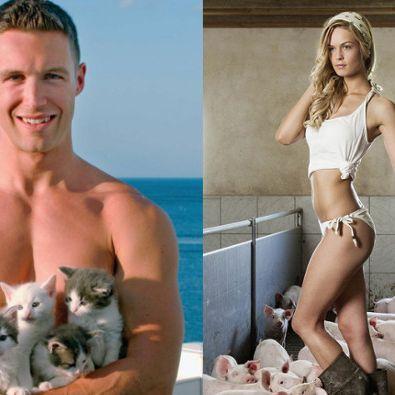 Kuschelige Katzen-Liebhaber, schleimiges Frischfleisch! (Foto)