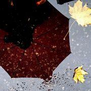 """Stürmischer November: """"Heini"""" schwächer als erwartet, Winter am Wochenende (Foto)"""