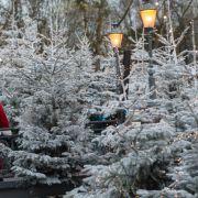 Es schneit! So wird das Wetter am 1. Advent (Foto)