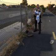Unter Betonschutt und Müll! Polizei findet lebendig begrabenen Säugling (Foto)