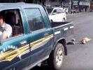 Der Chinese schleift den Hund zu Tode. (Foto)