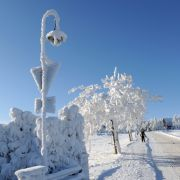 Mit der Wintersonnenwende werden die Tage wieder länger (Foto)