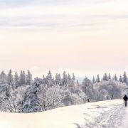 Prognose: Wintereinbruch lässt noch auf sich warten (Foto)