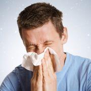 Allergie-Alarm an Weihnachten (Foto)