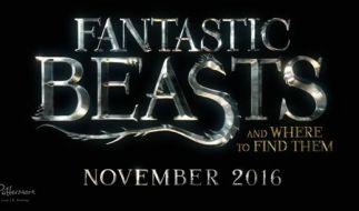 """Noch fast ein Jahr müssen die """"Harry-Potter""""-Fans auf das Spin-Off warten. (Foto)"""