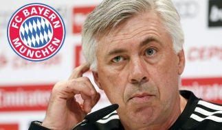 Wird Ancelotti in der kommenden Saison neuer Bayern-Coach? (Foto)