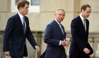 William und Charles töten, um Harry zum König zu machen: Das plante ein Attentäter. (Foto)