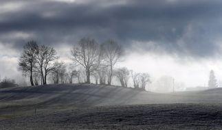 In Deutschland soll es milder werden - und scheien. (Foto)