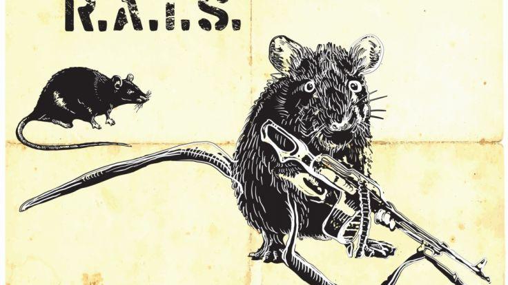 """""""Waffe der nächsten Generation"""": Wann die Ratten Schusswaffen einsetzen können und die Welt übernehmen, bleibt abzuwarten. (Foto)"""