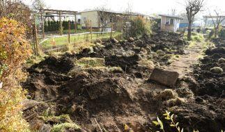 Auf diesem Grundstück in Luckenwalde wurde am 30.10.2015 die Leiche des ermordeten Elias entdeckt. (Foto)