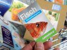 In einem aktuellen Ratgeber warnt die Umweltorganisation Greenpeace vor dem Verzehr von Fisch. (Foto)