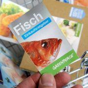 Vorsicht! Diese Fische sollten Sie besser nicht mehr essen (Foto)