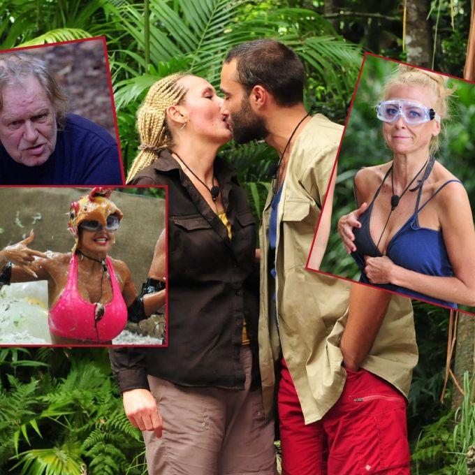Senfhure Heulena! Die fiesesten Tweets zum Dschungelcamp (Foto)