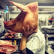 Beef wegen Schweinekopf-Foto: Vegan-Koch attackiert Mälzer (Foto)