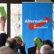 3 Millionen Euro! Rekord-Spendeneinnahmen für die AfD (Foto)