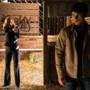 In der Pro7-Mediathek: Scully und Mulder mit Monster-Terror (Foto)