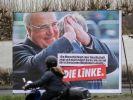 Kurz vor den Wahlen in Rheinland-Pfalz sorgt die Linke für irritierende Wahlwerbung. (Foto)