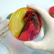 Kaufland ruft mit Salmonellen verseuchte Wurst zurück (Foto)