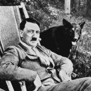 Arzt-Akten enthüllen! Des Führers bestes Stück war deformiert und winzig (Foto)