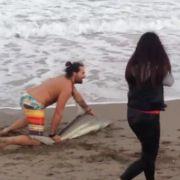 Kranker Foto-Wahn! Mann quält Mini-Hai für Foto (Foto)