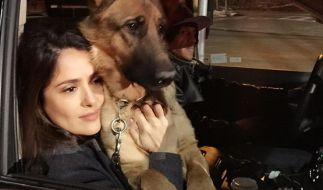 Salma Hayek trauert um ihren geliebten Hund Mozart. Ein Unbekannter hat das Tier erschossen. (Foto)