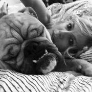 Tierischer Betthupfer: Heidi Klum kuschelt mit ihrer Bulldogge.