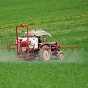 So gefährlich ist Glyphosat wirklich (Foto)