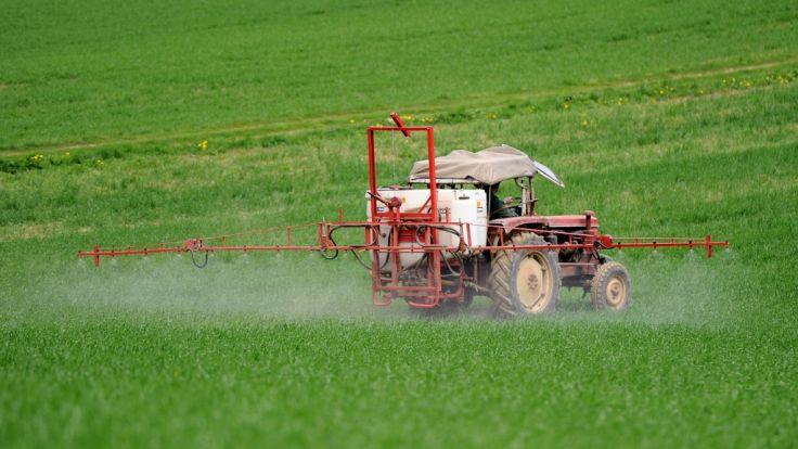 Glyphosat ist der meist verwendete Wirkstoff in Pflanzenschutzmitteln. (Foto)