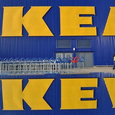 Hinter den Kulissen von Ikea: Zwischen Pressspanplatte und Köttbullar! (Foto)