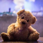 Kurios: Python verschlingt Teddybär als ganzes Stück! (Foto)