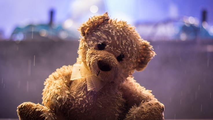 """Ein Teddybär wurde der Pythonschlange """"Lucky"""" in Australien zum Verhängnis. (Symbolbild) (Foto)"""