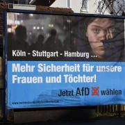 Illegale Parteispende? Schwerer Verdacht gegen die AfD (Foto)
